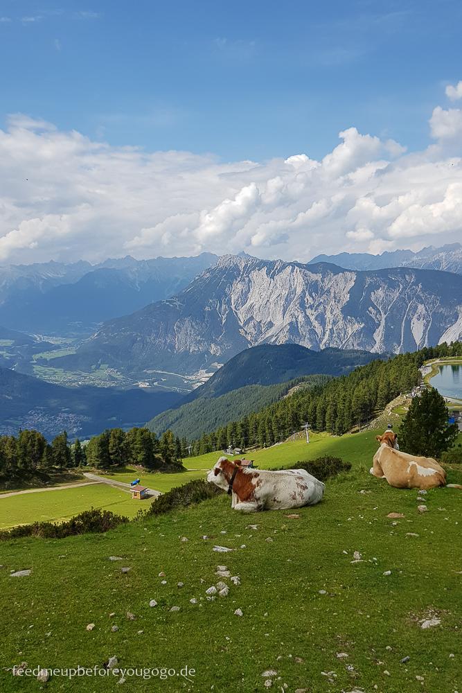 Blick vom Hochötz aufs Ötztal, Tirol