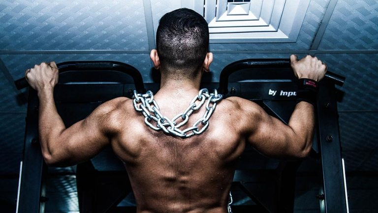 How To Train Your Muscles Correctly