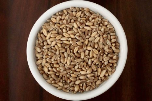 Uncooked wheat berries - a great source of fiber and protein