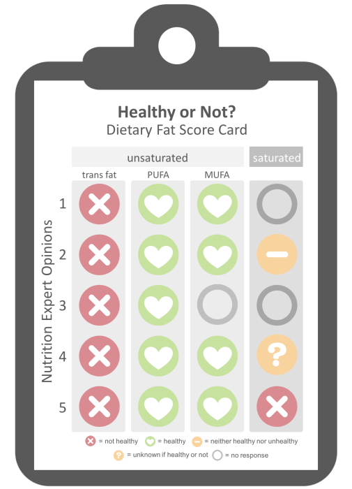 summary of nutrition expert opinion on dietary fat