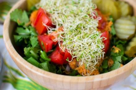 Salad Inspiration and a Recipe for Gratitude Salad Dressing   Fe