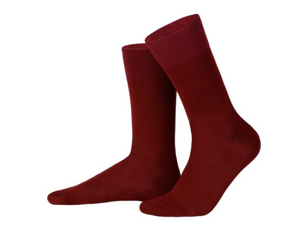 Egyptian cotton socks (burgundy), Luxury collection