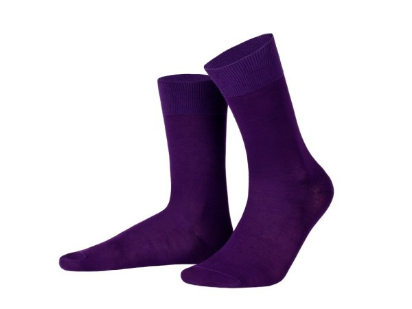 Egyptian cotton socks (violet), Luxury collection