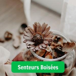 Image illustrant un parfum aux senteurs boisées