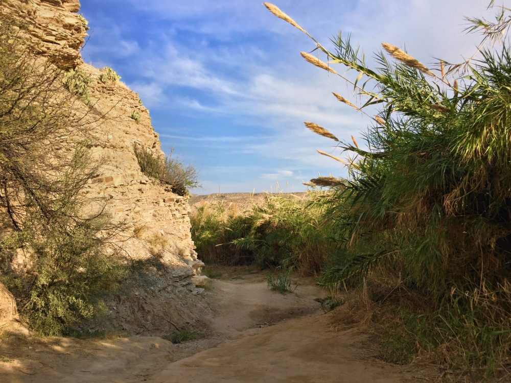 Hot Springs Historic Trail in Big Bend National Park