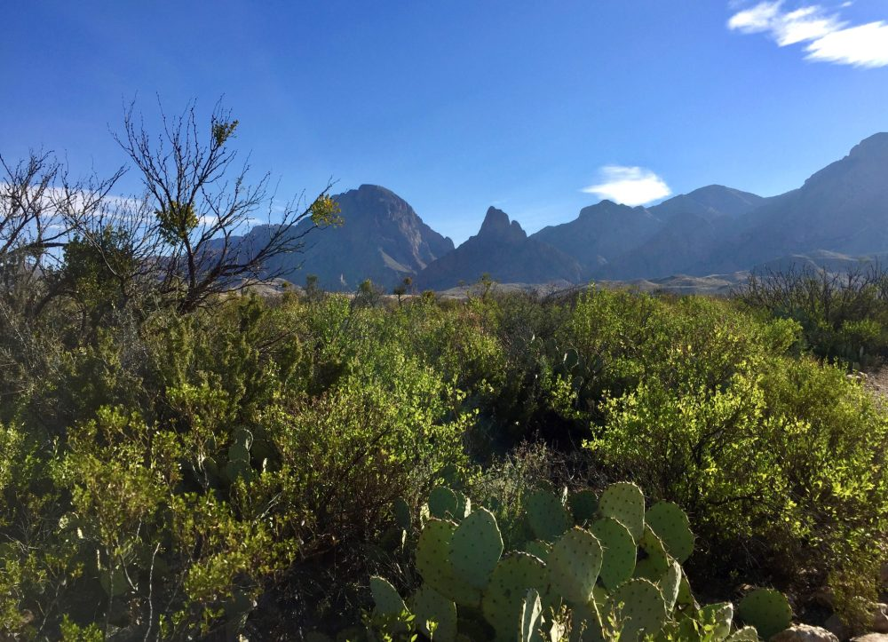 View of Chisos Mountains near Sam Nail Ranch