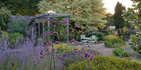 Photos of the flowers, trees and shrubs in Clare's garden