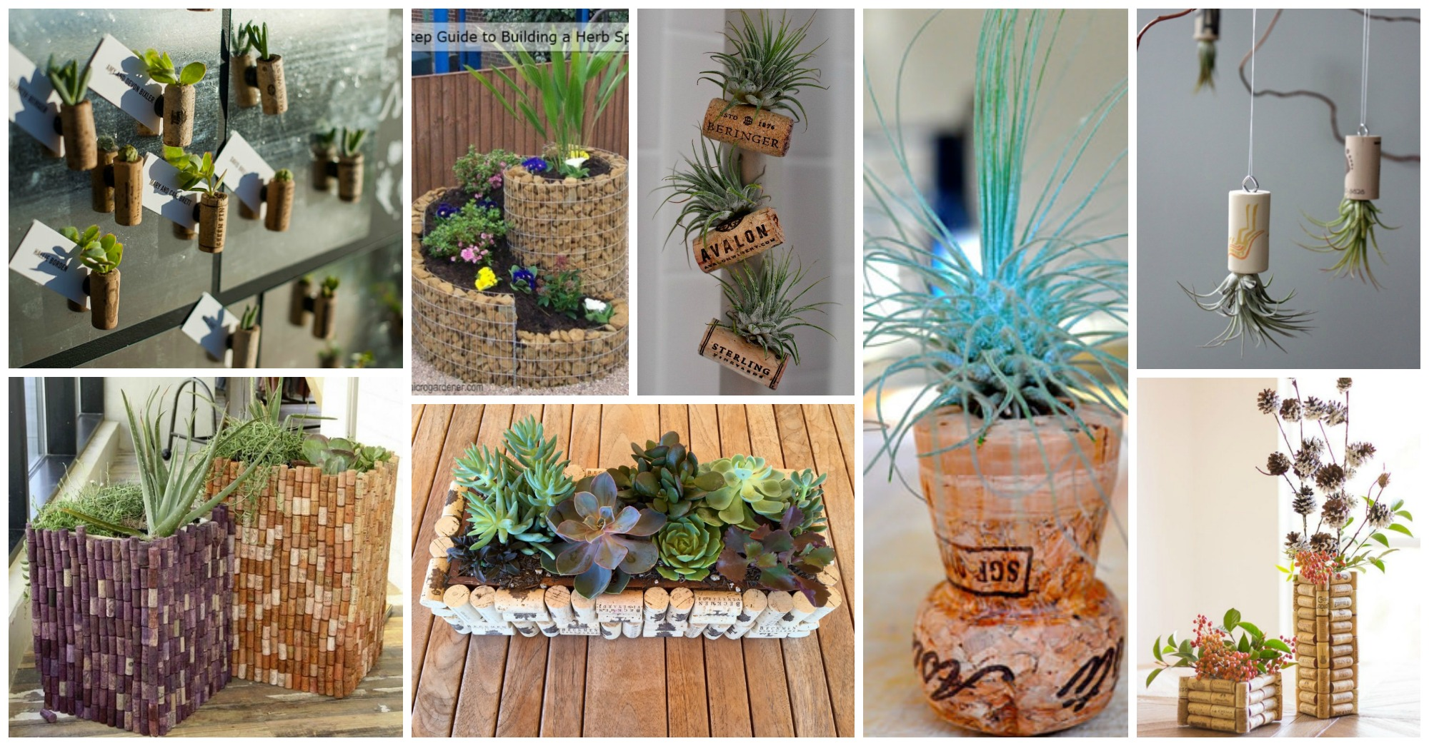 Diy Wine Cork Planters That You Should Not Miss