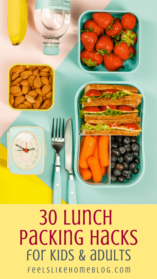 a set of lunch containers for packing with a sandwich, blueberries, carrots, nuts, and strawberries