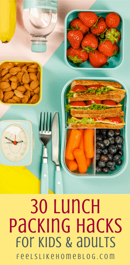 a set of lunch containers with a sandwich, blueberries, carrots, nuts, and strawberries with packing lunch hacks
