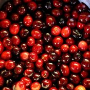 Homemade Orange Cranberry Sauce