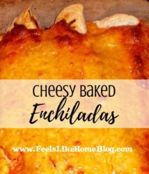 How to Make Easy and Simple Cheesy Baked Chicken Enchiladas - This meal is cooked in the oven which crisps the tortillas and makes them crunchy. Perfect comfort food meal for busy families!