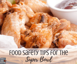 Food safety tips for the Super Bowl - Rules, tips, and ideas for keeping hot foods hot and cold foods cold. Don't get food poisoning at your party!