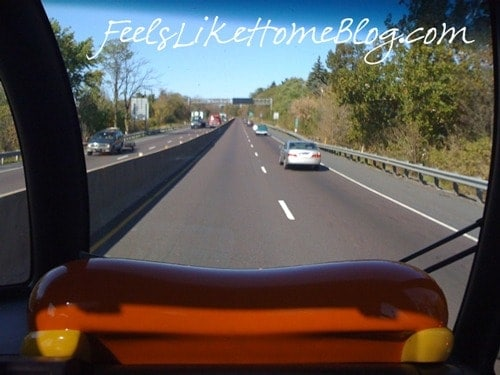 riding in the Oscar Mayer Wienermobile