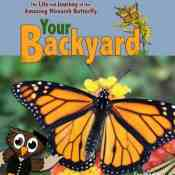 Your Backyard: The Life & Journey of the Amazing Monarch Butterfly DVD Review