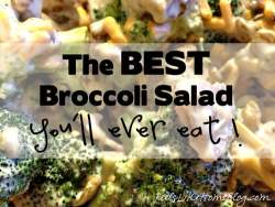 The Best Broccoli Salad You'll Ever Eat