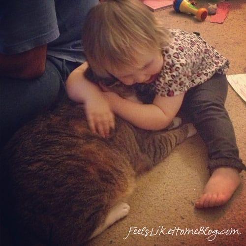 I Bite The Cat