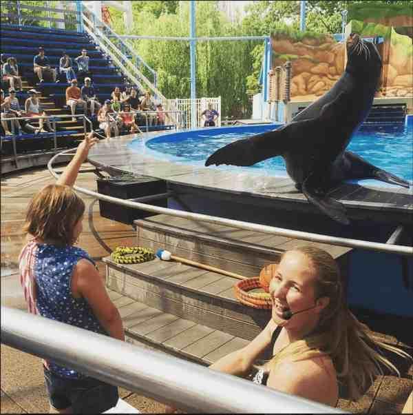 Talking to a sea lion