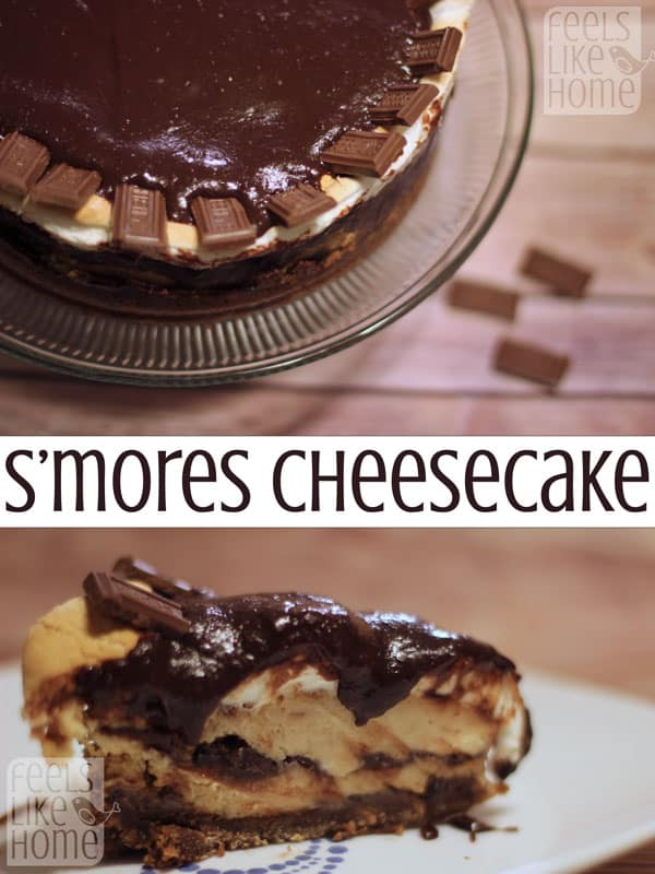 How to make the best s'mores Cheesecake recipe - This smooth, sweet cheesecake oozes with my favorite flavors - the sticky sweetness of toasted marshmallows and the rich gooeyness of homemade hot fudge. You MUST try this simple, easy, tasty recipe!
