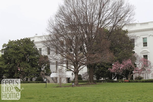 white-house-lets-move-event-with-first-lady-michelle-exterior3