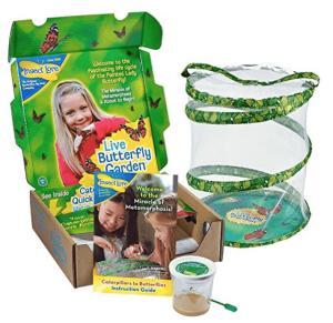 A butterfly garden kit