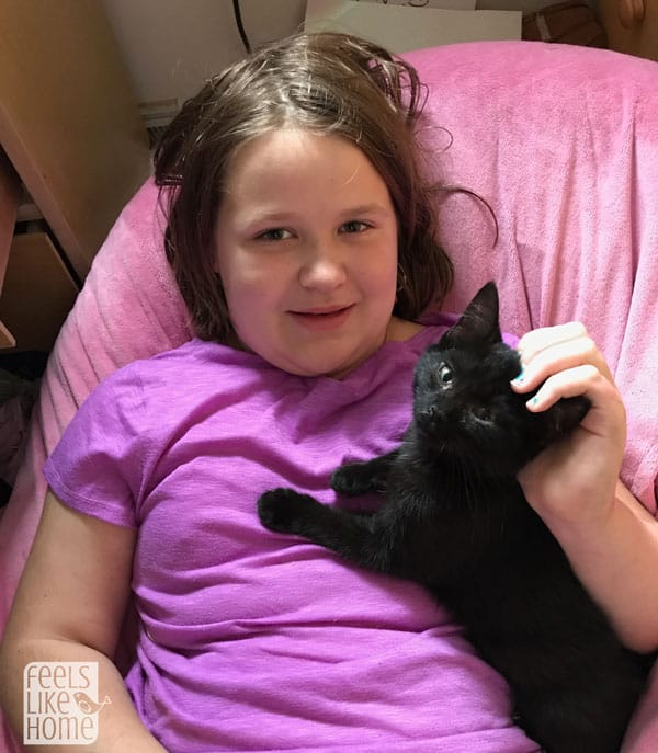 A little girl that is holding a cat
