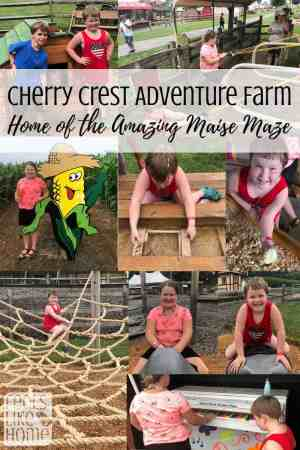 Cherry Crest Adventure Farm Review - Lancaster, PA attraction for families and kids. Includes one of the best corn mazes in the US as well as many other attractions!