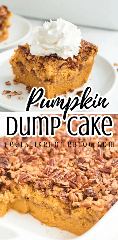 a collage of pumpkin cake with whipped cream and dump cake in a baking dish
