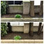 brick wall before and after pressure cleaning