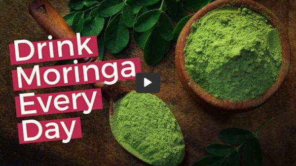 Wonderful Health Benefits Of Moringa