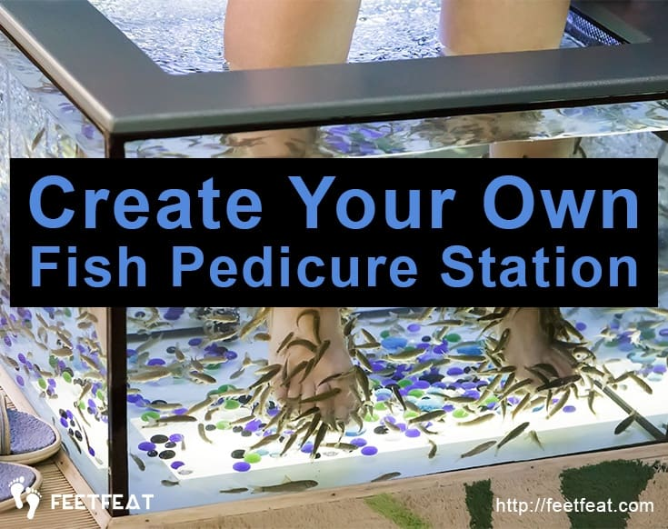 Create Your Own Fish Pedicure Station