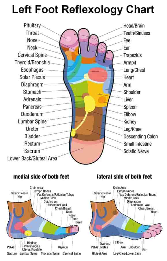Foot Reflexology Fact Or Fiction 5 Case Studies Reviewed
