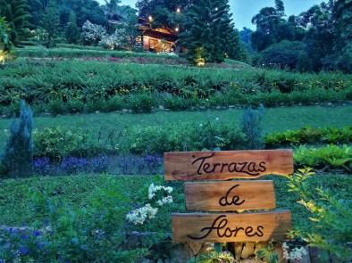 Terrazas De Flores Botanical Garden Menu Ideas De Nuevo Diseno