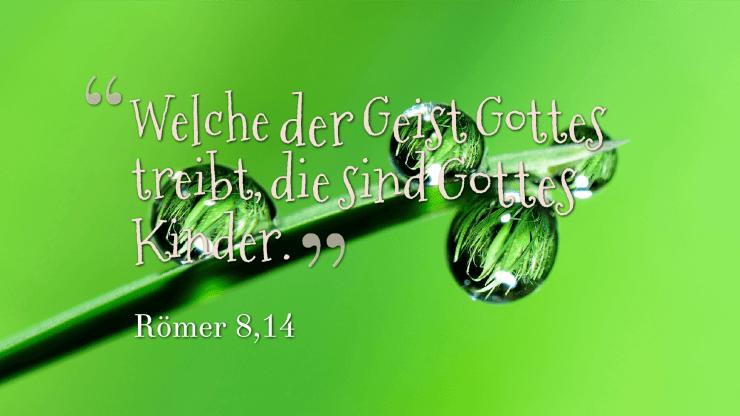 Welche der Geist Gottes treibt, die sind Gottes Kinder. - Römer 8,14