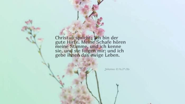 Christus spricht: Ich bin der gute Hirte. Meine Schafe hören meine Stimme, und ich kenne sie, und sie folgen mir; und ich gebe ihnen das ewige Leben. - Johannes 10,11a.27-28a
