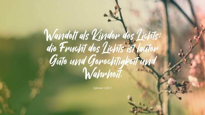Wandelt als Kinder des Lichts; die Frucht des Lichts ist lauter Güte und Gerechtigkeit und Wahrheit. - Epheser 5,8b.9