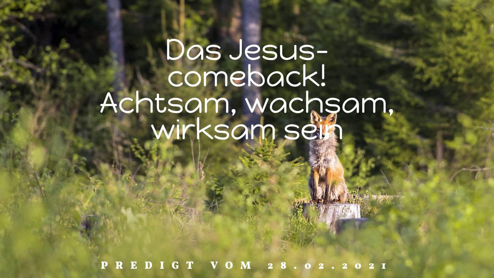 Das Jesus-comeback! Achtsam, wachsam, wirksam sein. Predigt vom 28.02.2021