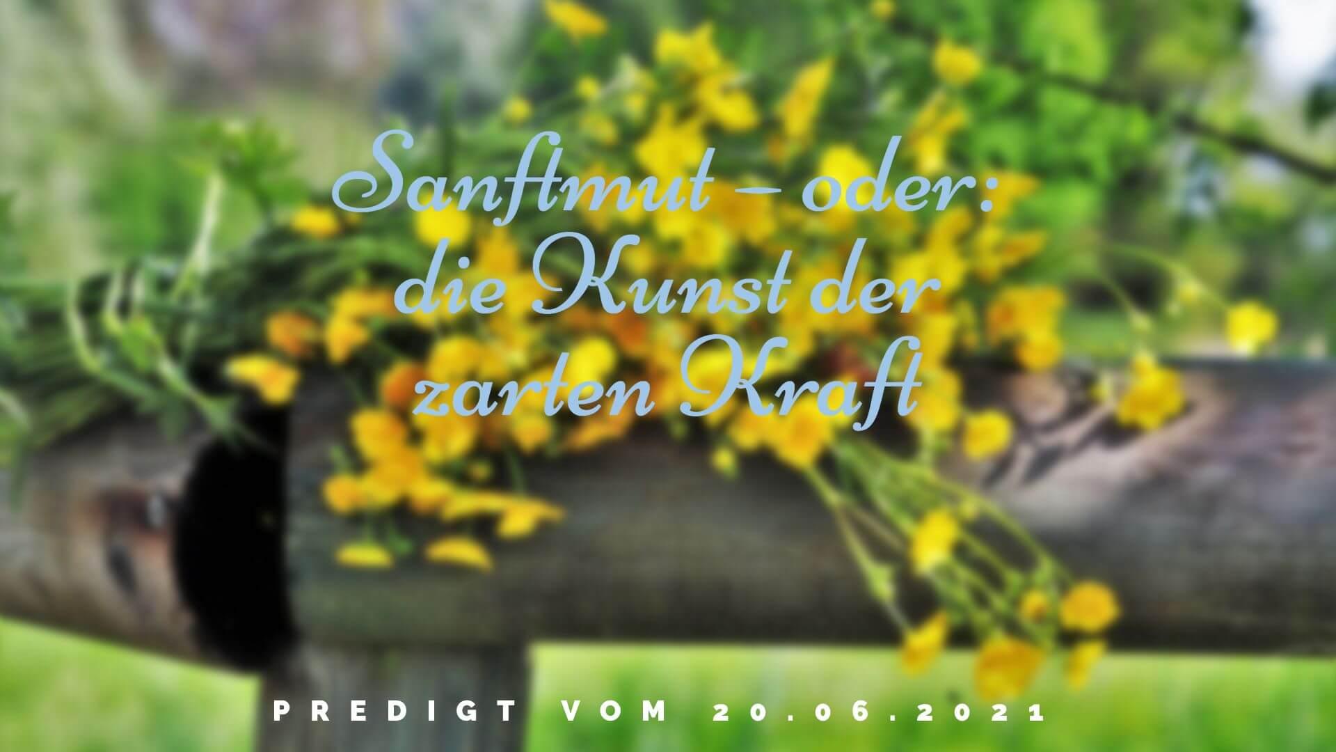 Sanftmut – oder: die Kunst der zarten Kraft. Predigt vom 20.06.2021