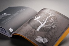 df-kalenderprojekt-2012-11_01