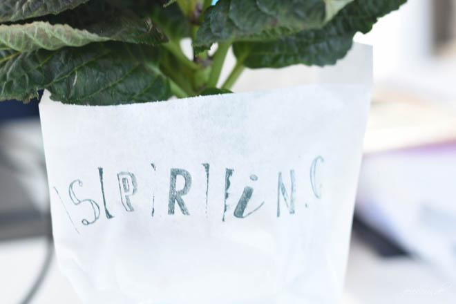 Hello-Spring_ein-Fruehlingsgruß-zum-verschenken_Mitbringsel