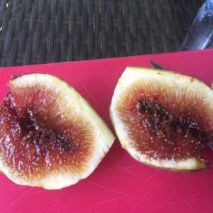 Ein Leckerbissen: Das Fruchtfleisch der Longue d'Aout Feige!