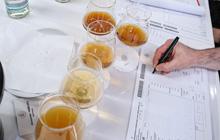 Jedes Jurymitglied machte seine Notizen und gab die Punktezahl auf dem Bewertungsbogen ab