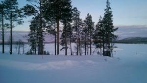 Eisige Schneelandschaft in Ivalo