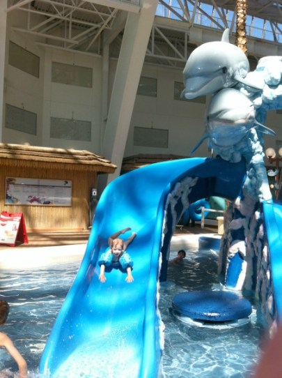 Dolphin Kiddie Pool West Edmonton Mall Waterpark