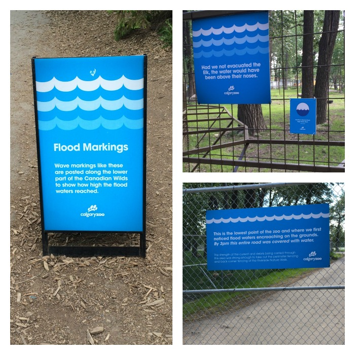 flood information signs at the calgary zoo