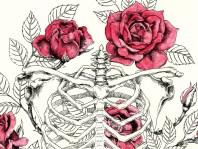 burton-board-original-illustration-roses-detail-1