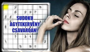 sudoku agy
