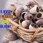 mákos kvíz