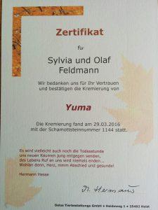 Kremierung von Yuma