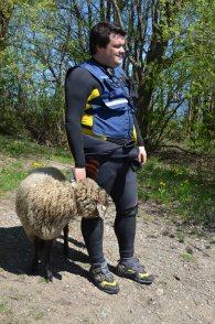Auch Schafe mussten von uns evakuiert werden